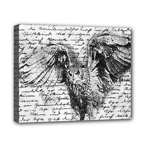 Vintage owl Canvas 10  x 8