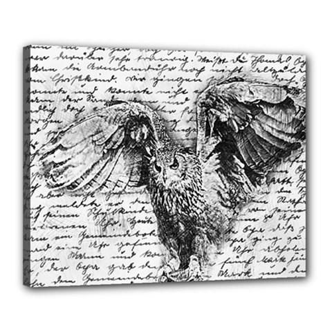 Vintage owl Canvas 20  x 16
