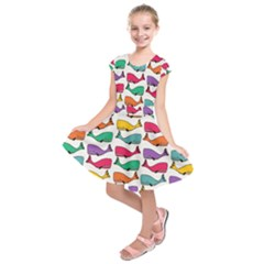Small Rainbow Whales Kids  Short Sleeve Dress