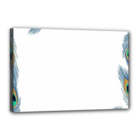 Beautiful Frame Made Up Of Blue Peacock Feathers Canvas 18  X 12