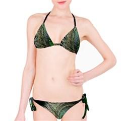 Feather Peacock Drops Green Bikini Set