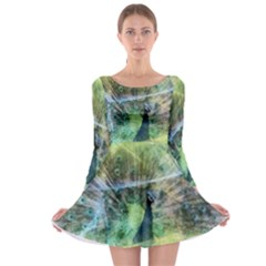 Digitally Painted Abstract Style Watercolour Painting Of A Peacock Long Sleeve Skater Dress