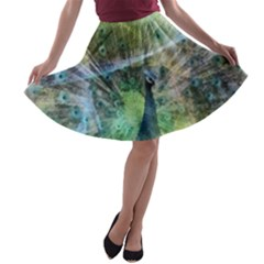 Digitally Painted Abstract Style Watercolour Painting Of A Peacock A-line Skater Skirt