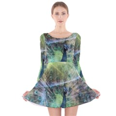 Digitally Painted Abstract Style Watercolour Painting Of A Peacock Long Sleeve Velvet Skater Dress