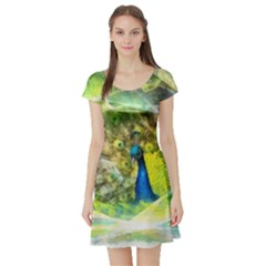 Peacock Digital Painting Short Sleeve Skater Dress