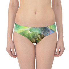 Peacock Digital Painting Hipster Bikini Bottoms