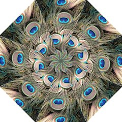 Colorful Peacock Feathers Background Straight Umbrellas