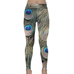Colorful Peacock Feathers Background Classic Yoga Leggings