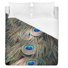 Colorful Peacock Feathers Background Duvet Cover (queen Size)