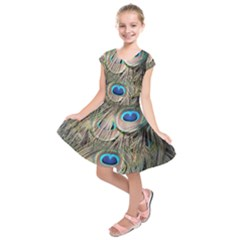 Colorful Peacock Feathers Background Kids  Short Sleeve Dress