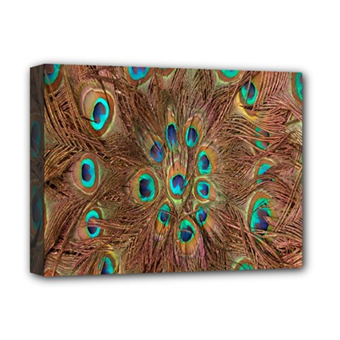 Peacock Pattern Background Deluxe Canvas 16  x 12