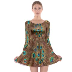 Peacock Pattern Background Long Sleeve Skater Dress