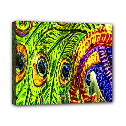 Glass Tile Peacock Feathers Canvas 10  X 8