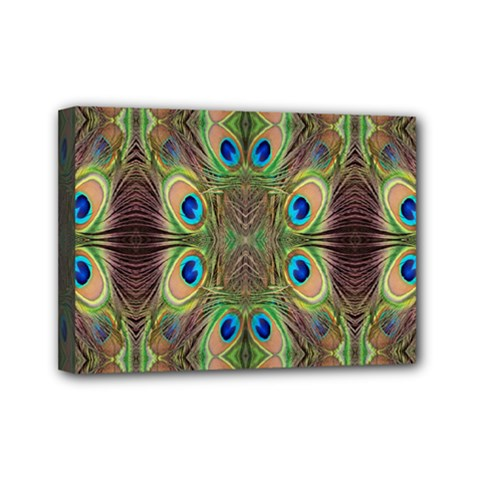Beautiful Peacock Feathers Seamless Abstract Wallpaper Background Mini Canvas 7  X 5
