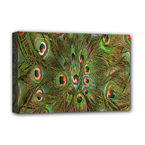 Peacock Feathers Green Background Deluxe Canvas 18  x 12