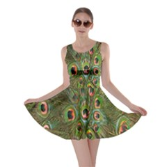 Peacock Feathers Green Background Skater Dress