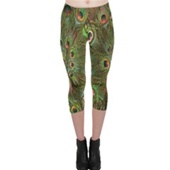 Peacock Feathers Green Background Capri Leggings