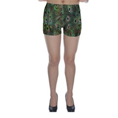 Peacock Feathers Green Background Skinny Shorts