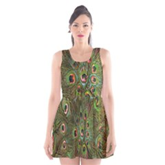 Peacock Feathers Green Background Scoop Neck Skater Dress