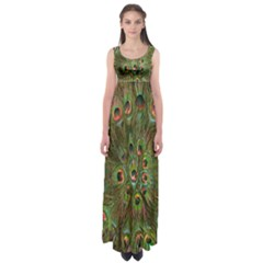 Peacock Feathers Green Background Empire Waist Maxi Dress