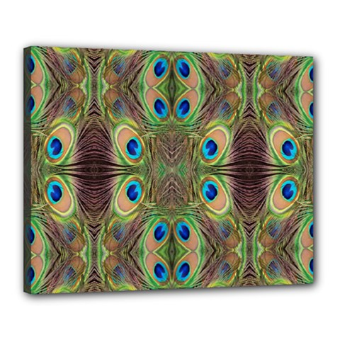 Beautiful Peacock Feathers Seamless Abstract Wallpaper Background Canvas 20  x 16