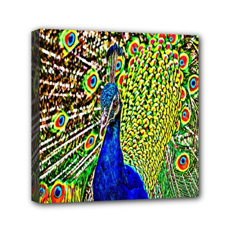 Graphic Painting Of A Peacock Mini Canvas 6  X 6