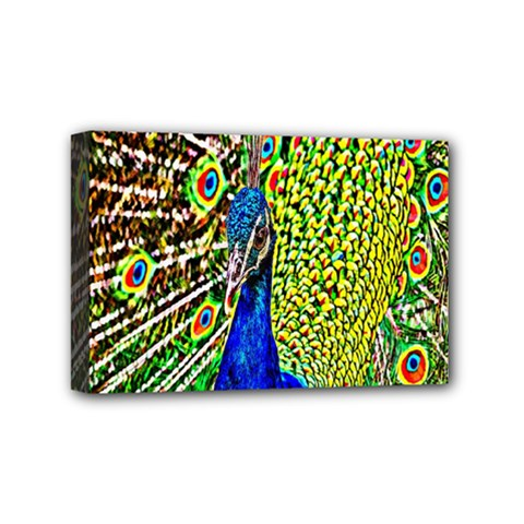 Graphic Painting Of A Peacock Mini Canvas 6  x 4