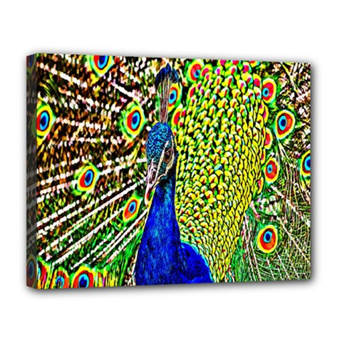 Graphic Painting Of A Peacock Canvas 14  x 11