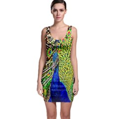 Graphic Painting Of A Peacock Sleeveless Bodycon Dress