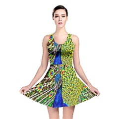 Graphic Painting Of A Peacock Reversible Skater Dress