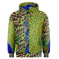 Graphic Painting Of A Peacock Men s Pullover Hoodie