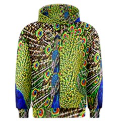 Graphic Painting Of A Peacock Men s Zipper Hoodie