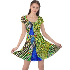 Graphic Painting Of A Peacock Cap Sleeve Dresses