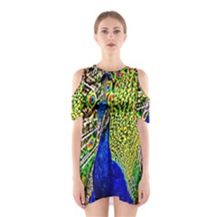 Graphic Painting Of A Peacock Shoulder Cutout One Piece