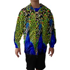 Graphic Painting Of A Peacock Hooded Wind Breaker (Kids)