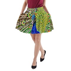 Graphic Painting Of A Peacock A Line Pocket Skirt