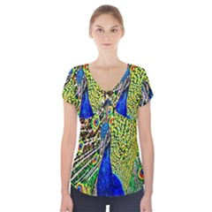 Graphic Painting Of A Peacock Short Sleeve Front Detail Top