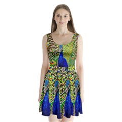Graphic Painting Of A Peacock Split Back Mini Dress