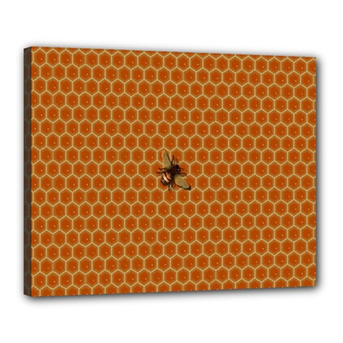 The Lonely Bee Canvas 20  X 16