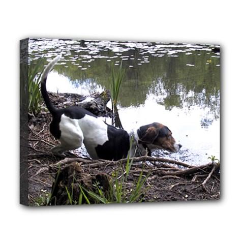Treeing Walker Coonhound In Water Deluxe Canvas 20  x 16