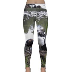 Treeing Walker Coonhound In Water Classic Yoga Leggings