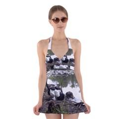 Treeing Walker Coonhound In Water Halter Swimsuit Dress