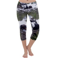 Treeing Walker Coonhound In Water Capri Yoga Leggings