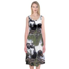 Treeing Walker Coonhound In Water Midi Sleeveless Dress