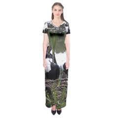 Treeing Walker Coonhound In Water Short Sleeve Maxi Dress