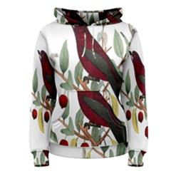 Bird On Branch Illustration Women s Pullover Hoodie