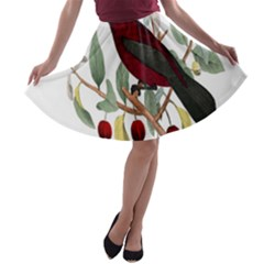 Bird On Branch Illustration A-line Skater Skirt