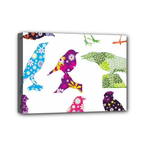 Birds Colorful Floral Funky Mini Canvas 7  X 5