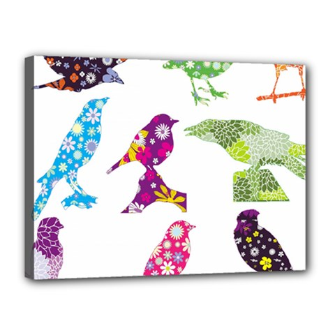 Birds Colorful Floral Funky Canvas 16  x 12