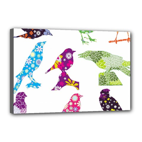 Birds Colorful Floral Funky Canvas 18  X 12